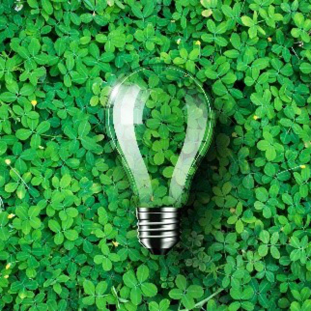 Glühbirne auf grünem Gras